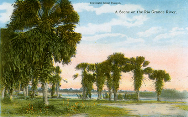 A Scene on the Rio Grande River - Image of hand tinted photograph of palm trees growing next to the Rio Grande. One of twentytwo images included on a double sided accordion fold souvenir image set. Photo: Robert Runyon Photograph Collection/The Center for American History and General Libraries, University of Texas at Austin